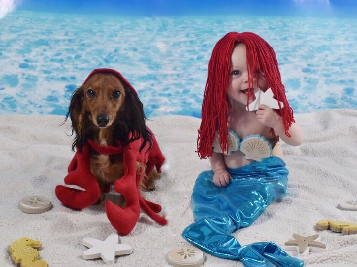 11 best matching baby and dog costumes images on pinterest baby disneys the little mermaid comes to life with these fun do it yourself dog and baby costumes solutioingenieria Image collections