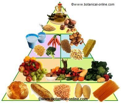 Pirámide de la dieta vegetariana