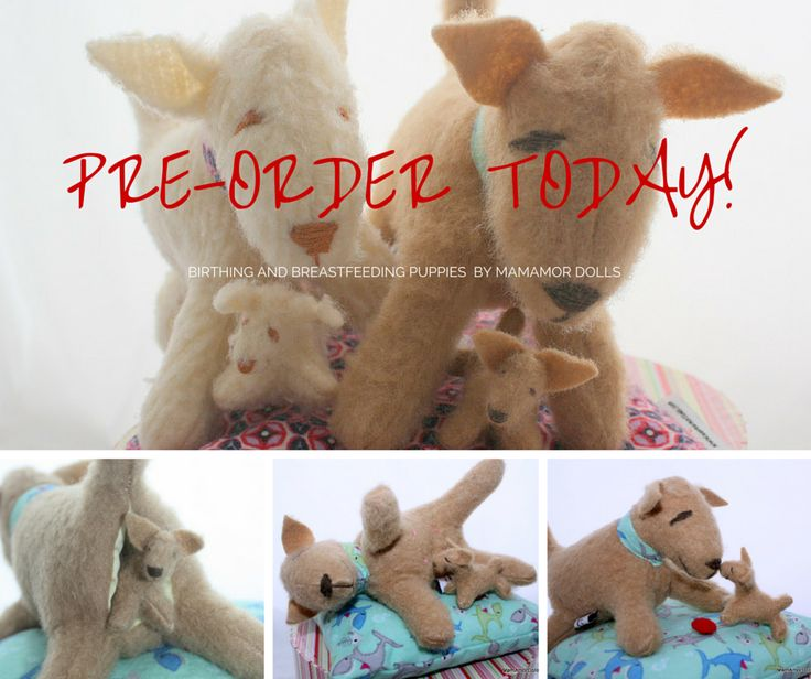 We are taking pre- orders! http://www.mamamordolls.com/collections/mamamor-puppies