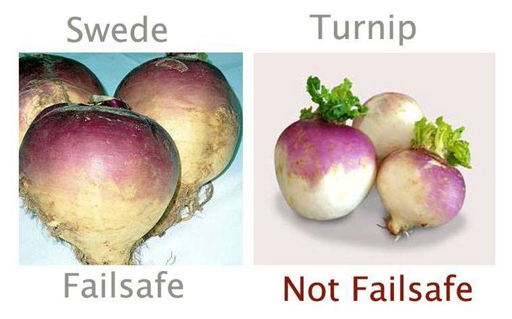 The Vegetable SWEDE, suitable for the failsafe diet. Turnips are moderate Salicylates. Failsafe refers to foods that are Free of Additives and Low in Salicylates, Amines, Glutamates and Flavour Enhancers
