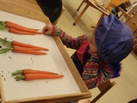 sorteren, tellen en seriëren met wortels