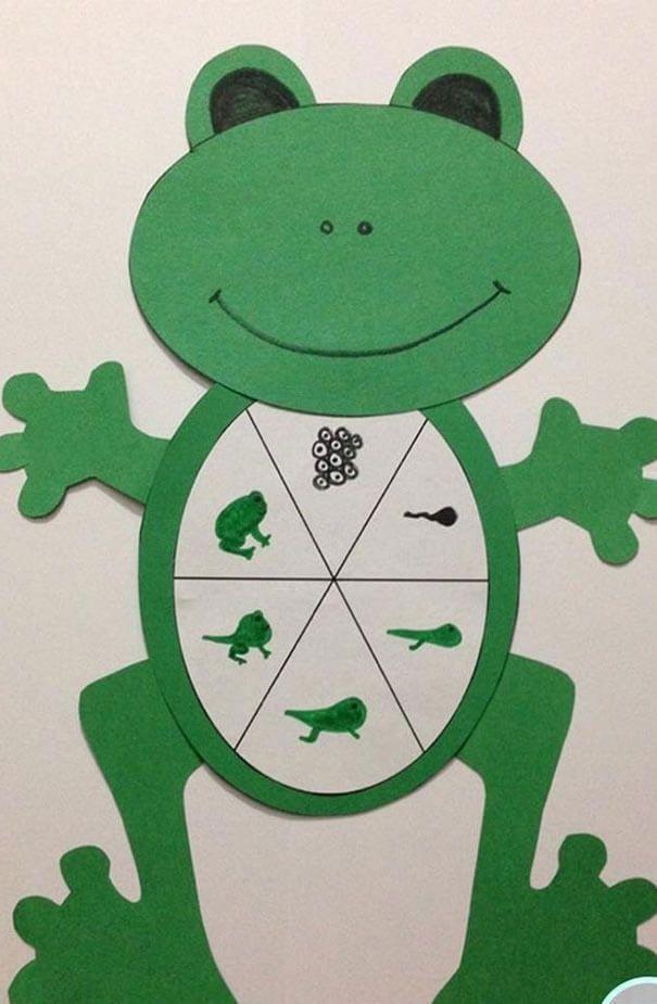 وسائل تعليمية للعلوم لرياض الاطفال من خامات البيئة سهلة بالعربي نتعلم Frog Life Cycle Craft Life Cycle Craft Life Cycles