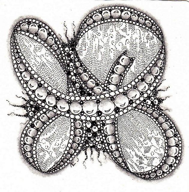 By Paper Art Studios, Jella Verelst, Certified Zentangle Teacher