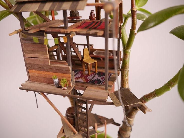 Stop-motion artist Jedediah Corwyn Voltz has been mastering his skills after work by making these miniature tree houses around his houseplants. So far he's made 25 and has no plan to ...