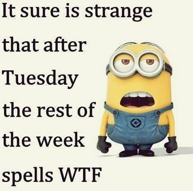"""""""It sure is strange that after Tuesday the rest of the week spells WTF."""""""