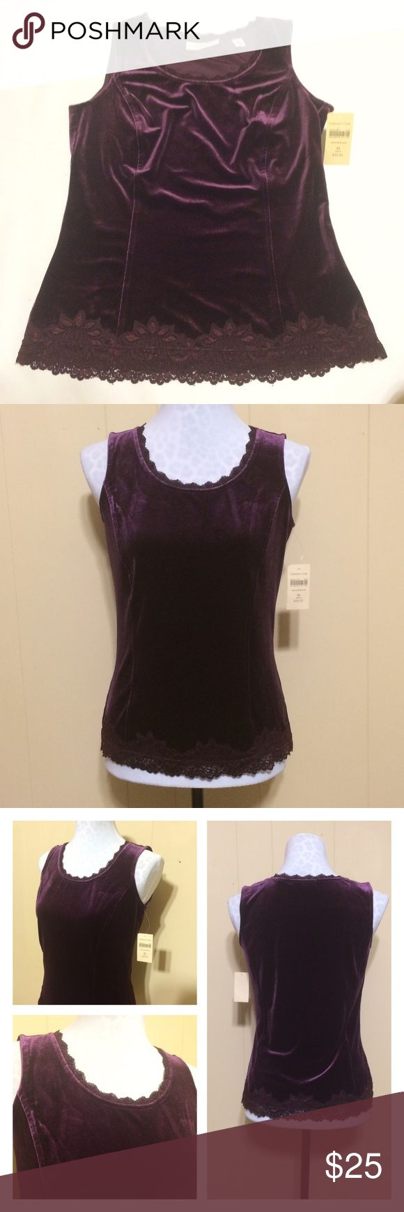 Coldwater Creek Velvet Top Royal purple top is NWT & flawless condition. Supple velvet (predicted to be Fall 2016's biggest trend). Lace details at neck & bottom hem. Darting/seams down front give the top great shape & definition. Labeled XS which is actually a 4 in their size chart. Great for layering, can easily be dressed up or down. Coldwater Creek Tops Blouses
