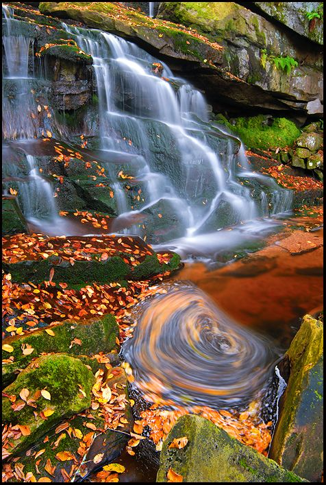 ✯ Second Falls of Shays Run - Blackwater Falls State Park, West Virginia
