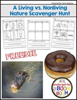 This product is an outdoor activity with 3 recording options for reviewing and practicing living vs. nonliving things. Included in the Living and Nonliving product is:1 page of directions2 recording sheets with pictures1 recording sheet with blank boxes for student inputEnjoy this freebie and thanks for following me!CaraP/S Don't forget to earn your TpT credit by leaving feedback!