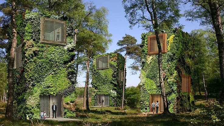 Is this the eco-city of our future?