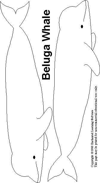 Click the Whale Mobile link for 4 double sided whale images to make a whale mobile.  Use sparkly and/or colored paper like the Montessori version.  Cut one of each at full size and one shrunk down for a mother and baby mobile.