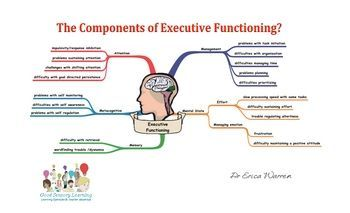 Free! Graphic Organizer...Components of executive functioning.