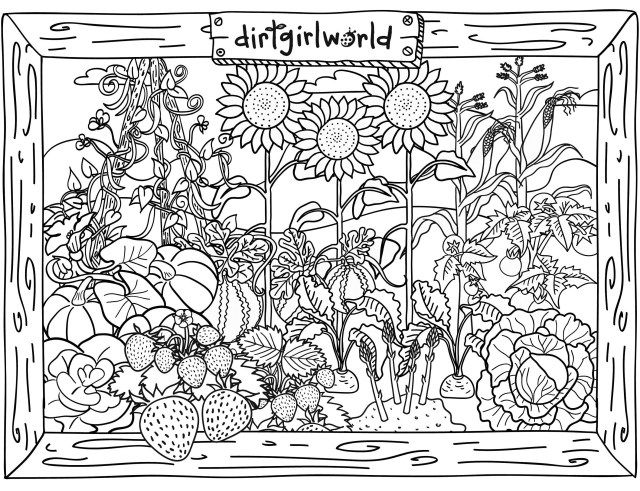 91d68acba51d98ed324bfa4cf2abc11b » Free Garden Coloring Pages