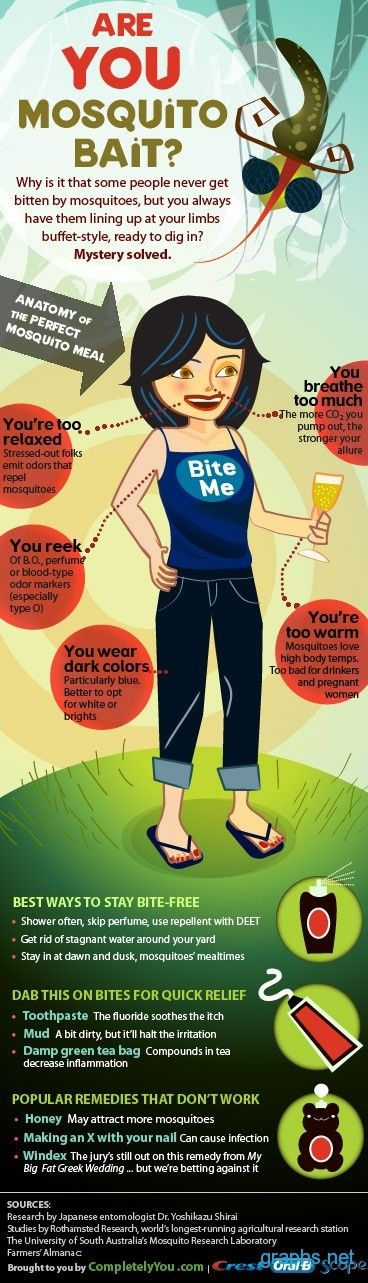 mosquito bait facts