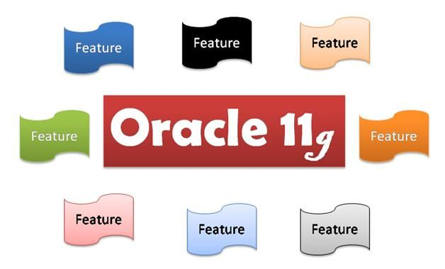 IBM was the first organization to create a RDBMS, however, Oracle Organization created record in 1980 by launching its RDBMS, Oracle, for professional use.