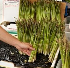 How to Grow Asparagus in Raised Beds