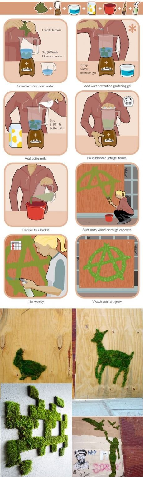 how to make moss art. There are better recipes out there but this is just to remind me.