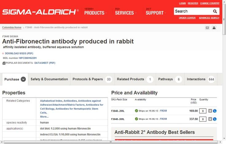 Anti-Fibronectin antibody produced in rabbit
