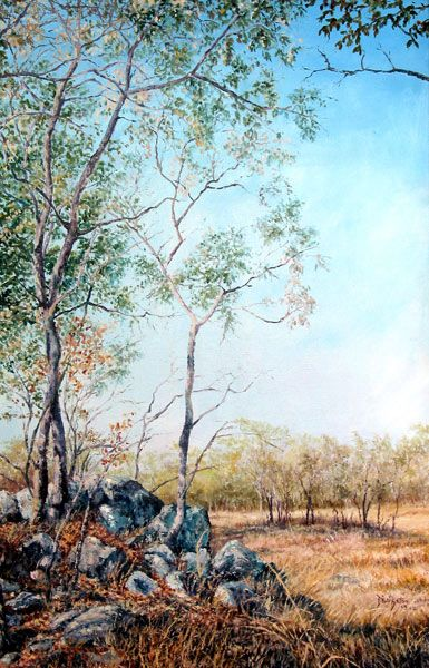 Manzhou (nee Mazowe) Game Ranch, Zimbabwe. Oil on Canvas by Dinah Beaton