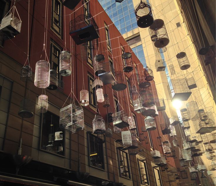 Walking around the Angle Place laneway in #Sydney, you can see lots of empty bird cages hanging in the sky