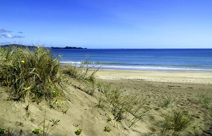 Woolleys Bay, Tutukaka Coast, Northland, New Zealand