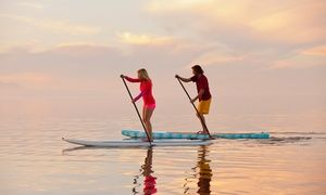 Groupon - Self-Guided Kayak Dolphin Experience for One or Two from Paddle Board New Smyrna (Up to 50% Off) in North Causeway. Groupon deal price: $23