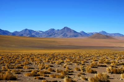 ARICA & PARINACOTA (3 days - 2 nights) - Rate: From US$585.00 per person for 2 Nights