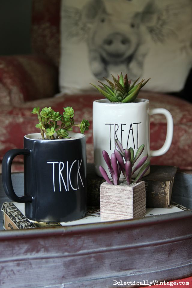Halloween mugs filled with succulents eclecticallyvintage.com