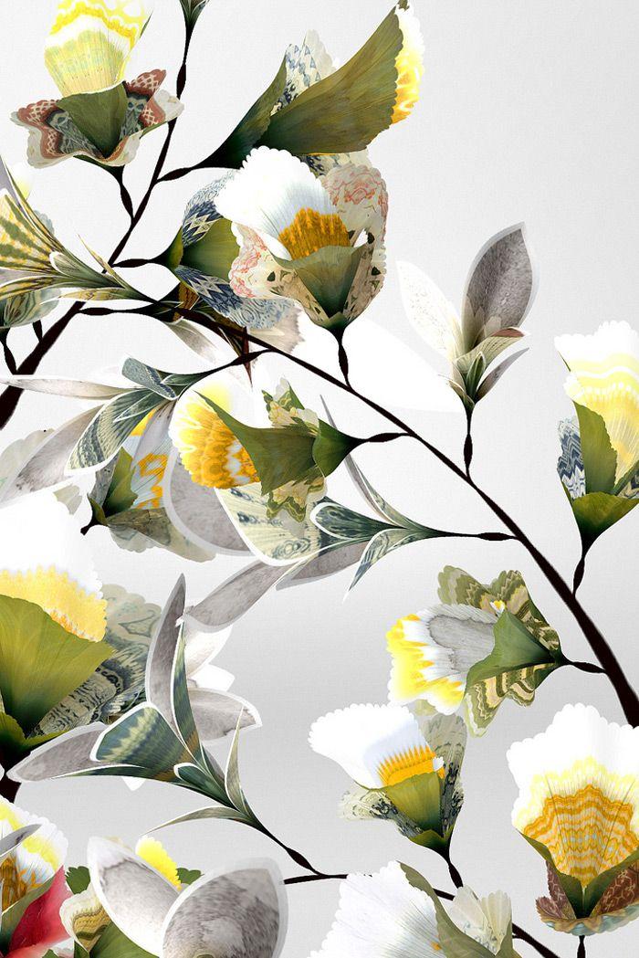 Daniel Brown   Digital Floral Art inspiration