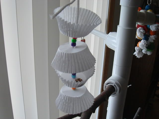 Home Made Toys for Parrots | ... it so it is a shredding/foraging toy so I can hide treats inside it