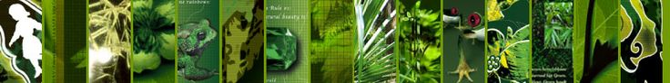 Mars 2004 - Edge Communication finaliste aux Epica Awards (publicité créative). La presse européenne spécialisée s'est réunie pour récompenser les publicités les plus créatives de 2003.  Le concours Epica a enregistré 4.536 envois de 608 agences publicitaires issues de 39 pays, dont un premier envoi de l'agence Edge Communication (Marketing Services & Brand Activation). Le jury des Epica Awards est composé de journalistes provenant des quatre coins de l'Europe.