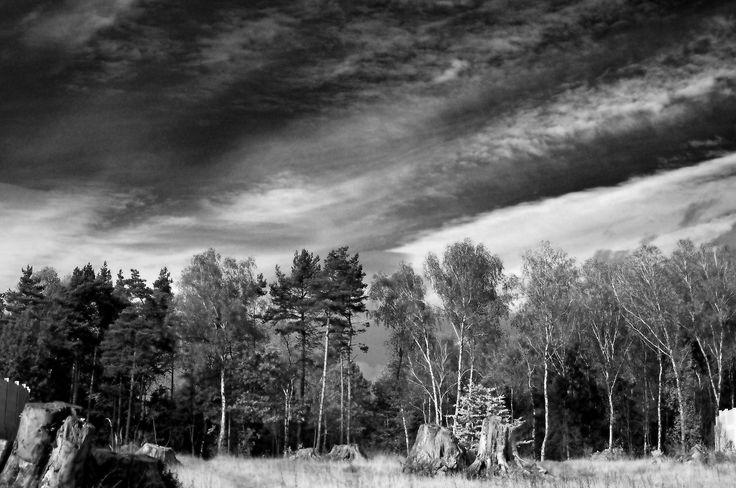 Las przez filtr IR