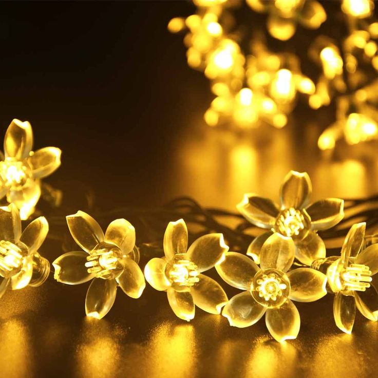 39 best outdoor images on pinterest outdoor gardens fairies amazon ledertek solar fairy string lights 21ft 50 led warm white blossom decorative mozeypictures Image collections
