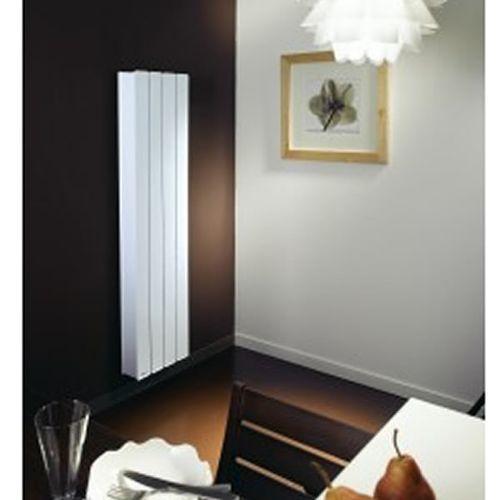 radiateur fonte elsa 2. Black Bedroom Furniture Sets. Home Design Ideas
