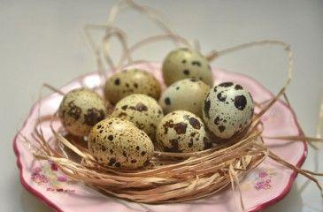 Как варить перепелиные яйца правильно? Сколько времени варить перепелиные яйца вкрутую и всмятку