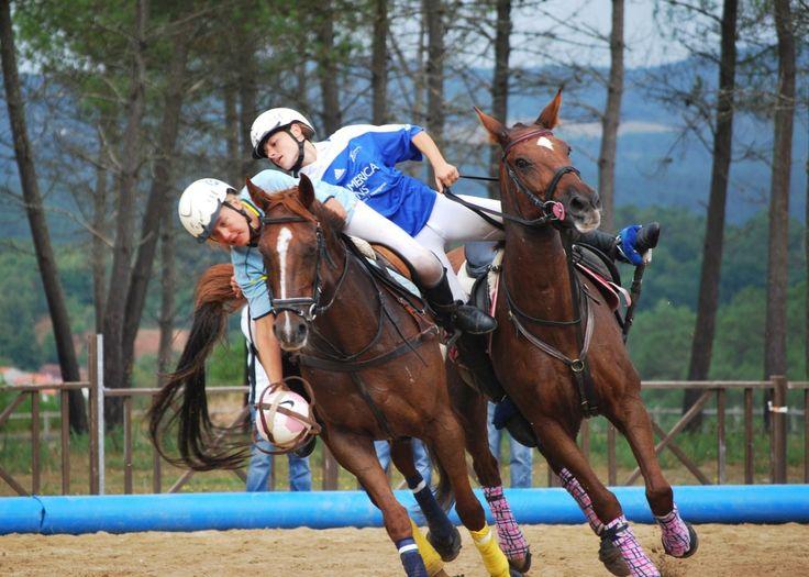 horseball   horseball 2