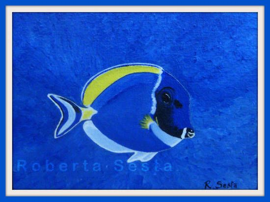 Pesce chirurgo