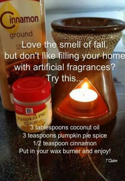 Love the smell of fall || 3 T coconut oil, 3 t pumpkin pie spice, 1/2 t cinnamon - put in your wax burner and enjoy.