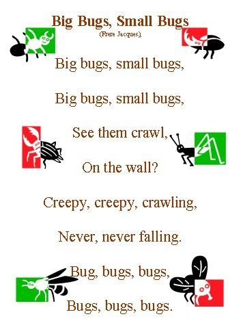 Small book of songs/rhymes about minibeasts - A versatile booklet of minibeast poems.