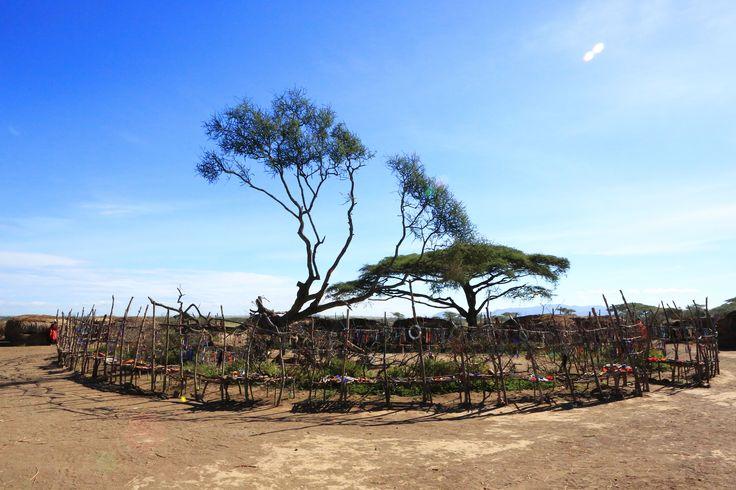 Maasai village, Tanzania