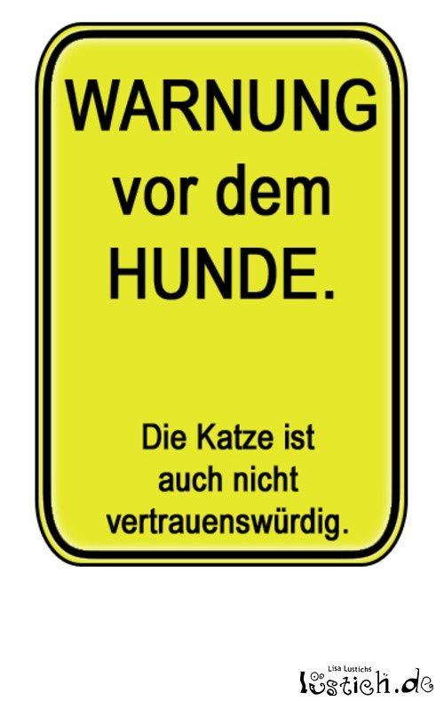 Zwielichtige Haustiere. Eines von 23.908 lustigen Bildern bei lustich.de…