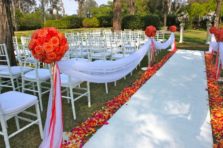 #wedding #ceremony #white #Tiffanychairs #whitecarpet with #rose petals, rose balls and fabric down the side of the aisle @ #Tamburlaine #organic wines