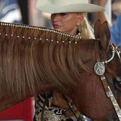 Double Bands Super cute for a horse whose mane you do not want to cut