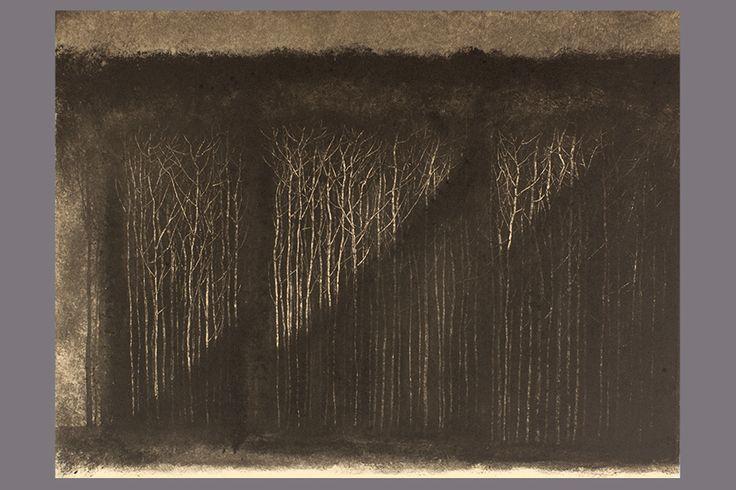 Monotype-Lumière, foret-Gerard Jan