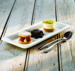 These Churchill Glide Rectangular Plates are perfect for modern dessert service! Available to buy online at http://www.mklimited.com/restaurant-banqueting/crockery-china/churchill-crockery/churchill-glide/30-4cm-churchill-glide-rectangular-plate-x6-detail.html