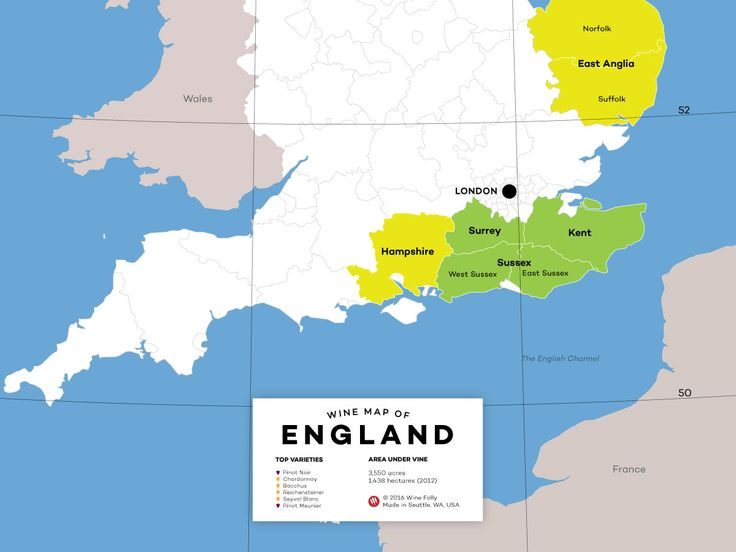 If you're curious about the growing buzz around English wine, this introductory guide to the wines of England will help you get to know the major emerging regions, grapes varieties and styles that are putting England on the map.