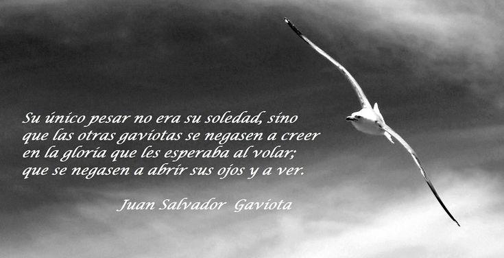 SPOONFUL   Juan salvador gaviota, Libro juan salvador