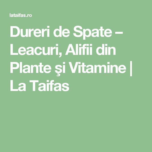 Dureri de Spate – Leacuri, Alifii din Plante şi Vitamine | La Taifas