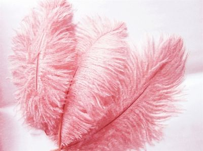 Ostrich feather as centrepieces for the baby shower