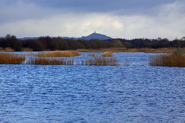 View of the Tor from bird hide on the Somerset Levels