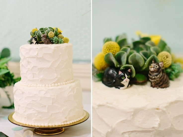 simple wedding cake with succulents and cats. www.themainetinker.com